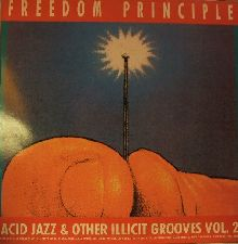 freedom principles, acid jazz & other illicit grooves vol 2